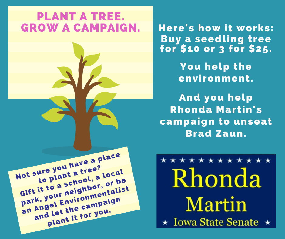 Plant a Tree Fundraiser